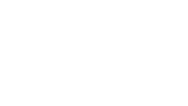 European Solidarnost