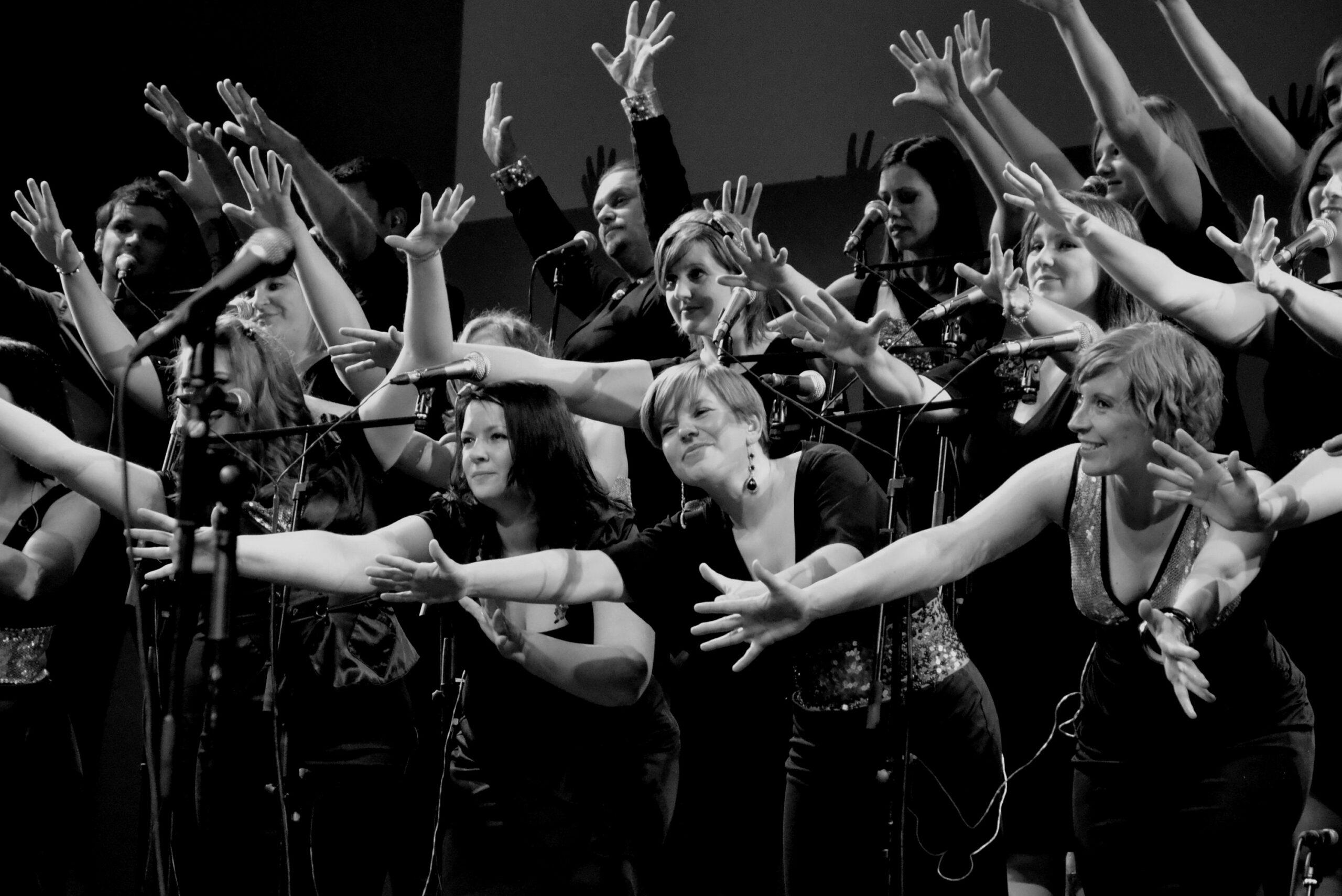 Janja Cizelj, Slovenija/Slovenia: Perpetum jazzile, 2014, Slovenija